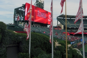 Angel Stadium from Outfield