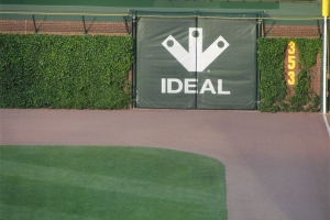 Right Field ivy looks great.